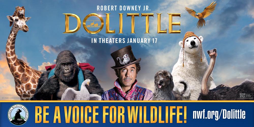 Dolittle | National Wildlife Federation