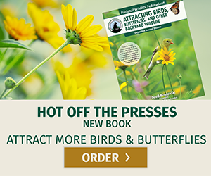 Hot off the presses! New book: attract more birds and butterflies