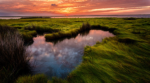 Chesapeake Bay Sunrise, Bob Miller
