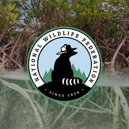 National Wildlife Federation logo over marshland photograph