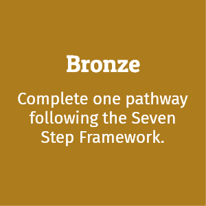 Bronze Award; complete one pathway following the Seven Step Framework