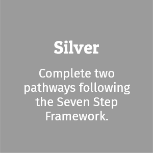 Silver; complete two pathways following the seven step framework