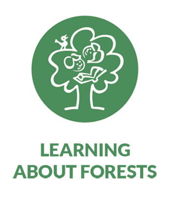Learning about forests (LEAF) pathway icon