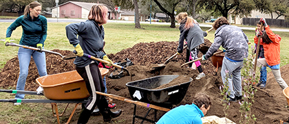 students shoveling dirt