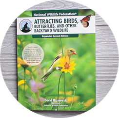 Certify to win with Garden for Wildlife