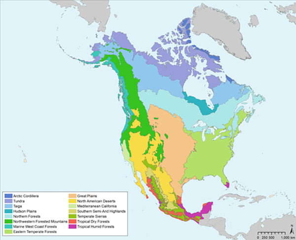 map of terrestrial eco-regions of North America