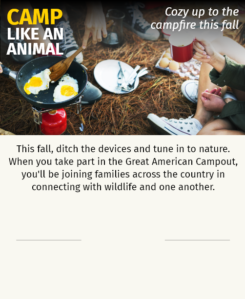 This fall, ditch the devices and tune in to nature. When you take part in the Great American Campout, you'll be joining families across the country in connecting with wildlife and one another.