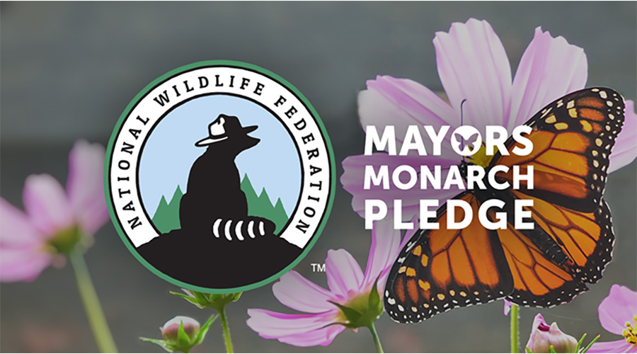 Mayors' Monarch Pledge