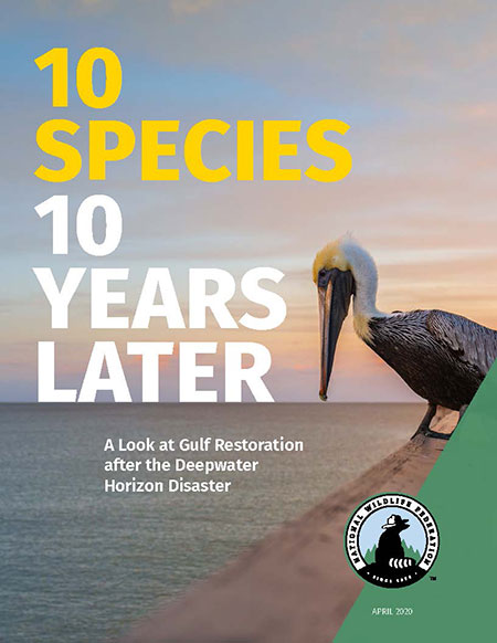 10 Species 10 Years Later report cover