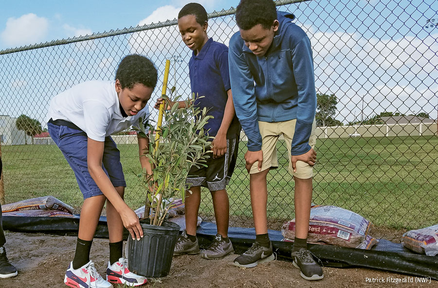 School kids planting trees for wildlife