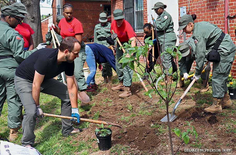 Earth Conservation Corps plants trees for earth day