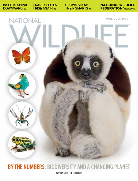 National Wildlife June-July 2020