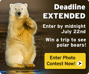 Deadline Extended! Enter the 2013 photo contest today.