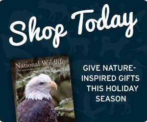 Give nature-inspired gifts for everyone on your list!