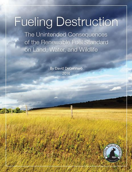 Fueling Destruction Cover