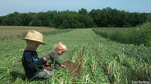 Kids by Cover Crops, Dan Perkins