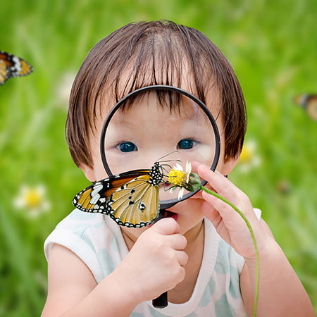 Child looking at a butterfly with a magnifying glass