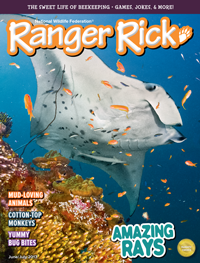 Subscribe to Ranger Rick Magazines!