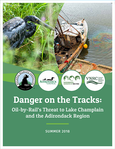 National Wildlife Federation report: Danger on the Tracks