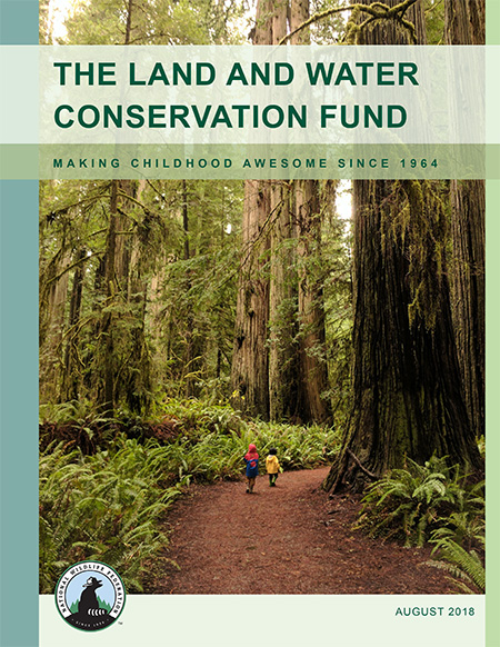 Report cover for The Land and Water Conservation Fund: Making Childhood Awesome Since 1964