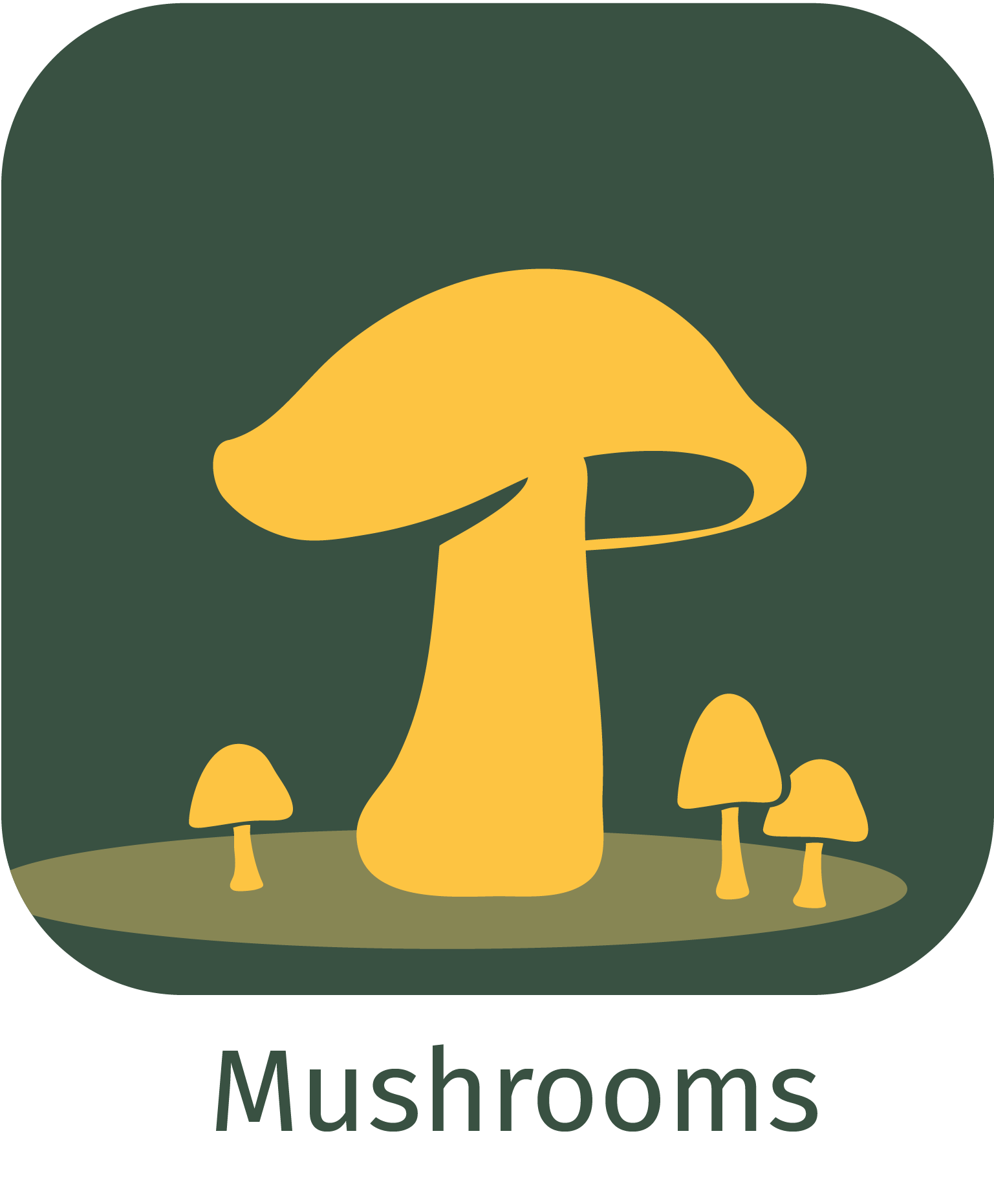 mushrooms app icon