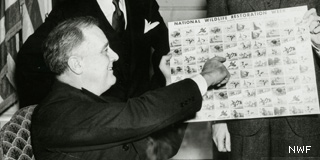 FDR with NWF Stamps